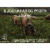 2ª Jornadas do Porco Bísaro