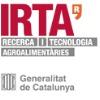 IRTA: Desafi actuais na produção suína: Onde estamos e para onde vamos