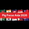 Pig Focus Asia