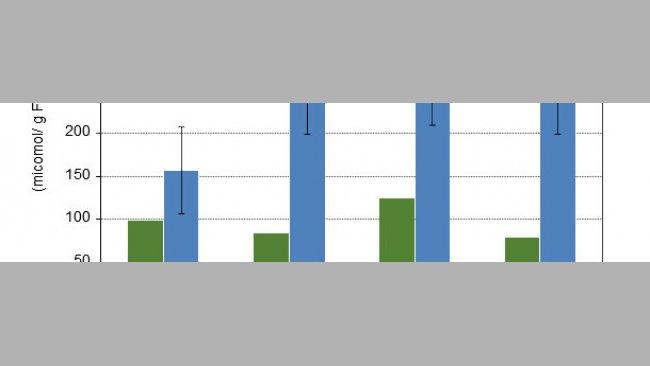 Concentração de ácidos gordos de cadeia curta sobre o bolo alimentar do cólon de leitões de 10 e de 15 dias após o desmame com 4 dietas experimentais diferentes.