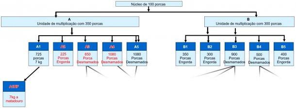 Figura 1. Estrutura da empresa – todos os sítios a encarnado tiveram DE clínica em 2015/6.