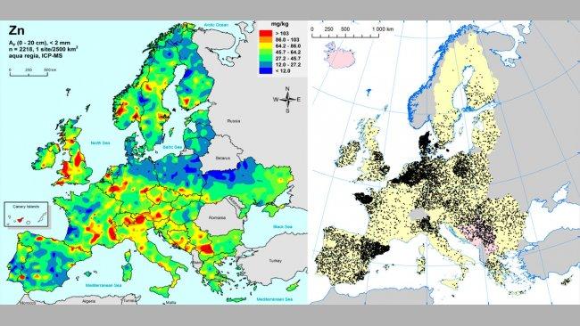 Izquierda: Zinc en suelos agrícolas de la UE (Gemas 2014): Niveles de zinc en la superfície del suelo (20 cm superiores) en tierra agrícola en Europa (tomado de Reimann et al., 2014). Derecha: Granjas porcinas en la UE (Eurostat, 2014).