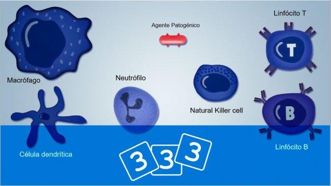 Descubraa imunologia na 3tres3