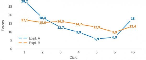 Gráfico 2. Estrutura censal por ciclo, a 31 de Dezembro de 2016
