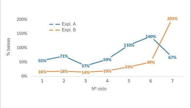 Gráfico 1. Percentagem de porcas eliminadas por nº de ciclo (nº porcas eliminadas por ciclo/efectivo médio por ciclo) em 2016