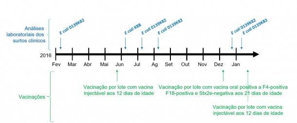 Imagen 1: Análises laboratoriais dos surtos clínicos e calendário de vacinações