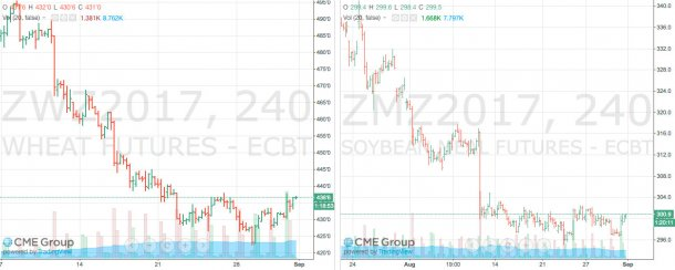 Gráfico1. Evolução do preço do milho no mercado de futuros Chicago Board of Trade (CBOT). Fonte: CME Group. Gráfico2. Evolução do preço do bagaço de soja no mercado de futuros Chicago Board of Trade (CBOT). Fonte: CME Group.