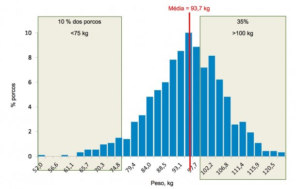 Figura 5. Distribuiçãode pesos nofinal daengorda. Cerca de35% dos porcos pesammais de 100 kg, enquanto10% estãoabaixo dos 75 kg.
