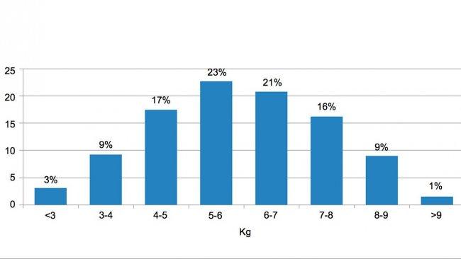 Figura 2. Distribuiçãodos animais de acordocom opeso àentrada dodesmame. Adiferença entre os5% de porcos commenos peso e os5% com maiorpeso éde 6kg.