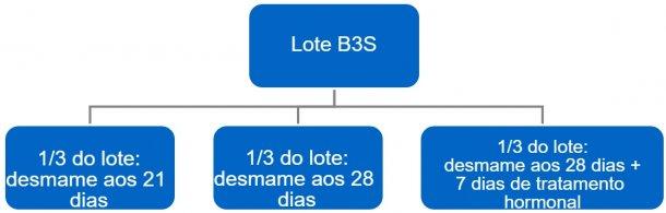 Figura 4. Processo de passagem de bandas a 3 semanas (B3S) para bandas semanais.