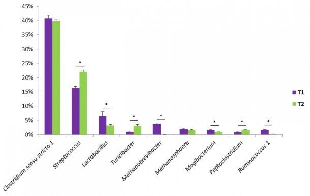 Figura1. Alguns dos géneros bacterianos encontrados nas fezes de suínos.T1 é o grupo decontrolo. T2 é um grupo tratado com uma mistura deBacillusnoalimento.