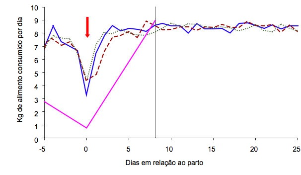 Gráfico 4: Esquema de alimentação das porcas em função da condição corporal da porca no dia 105 e do regime de alimentação: ad libitum (verde, azul, vermelho) ou standard (cor-de-rosa) (A. Cools, 2014)
