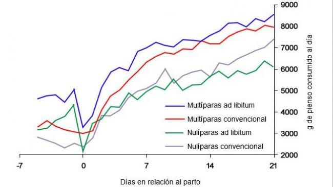 Gráfico6. Consumo de alimento na lactação de porcas alimentadas ad libitum e/ou com um programa convencional no periparto