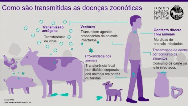 Figura 1. Rotas de transmissão das doenças zoonóticas. As zoonoses são doenças infecciosas que podem ser transmitidas de animais a humanos, mas também de humanos a animais. Fonte: London School of Hygiene and Tropical Medicine.