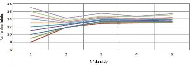 Gráfico 1. Evolução da prolificidade em função da prolificidade do primeiro parto. Por cada leitão ao primeiro parto teremos mais 0,4 leitões por parto (Pinilla et al., 2014).