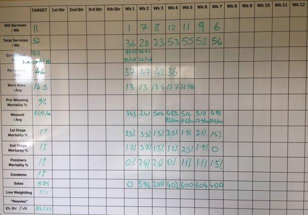 Figura 10. Rendimento semanal da unidade em Fevereiro de 2018.