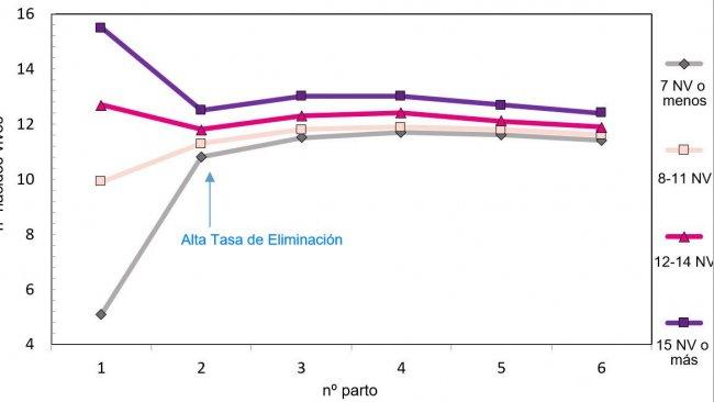 Gráfico 1. Produção ao longo da vida da porca em função dos leitões nascidos