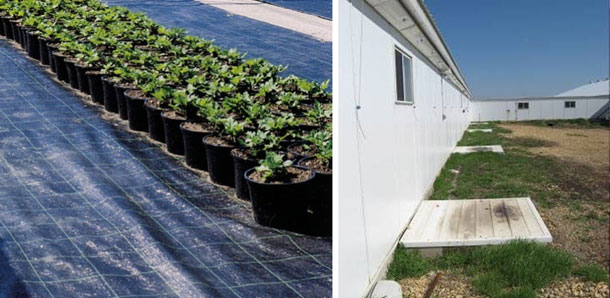 Exemplo de barreira plástica que evita o crescimento de vegetação