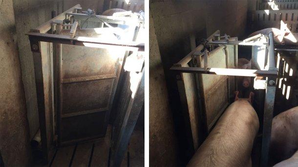 Foto 1. Portas de saída da estação de alimentação.