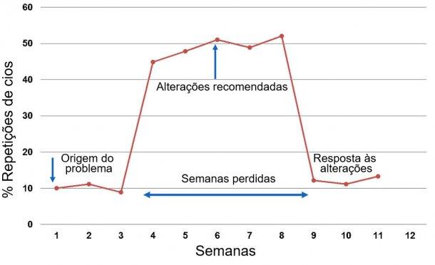 Gráfico 1. Resposta reportada por semana de serviço ou monta.