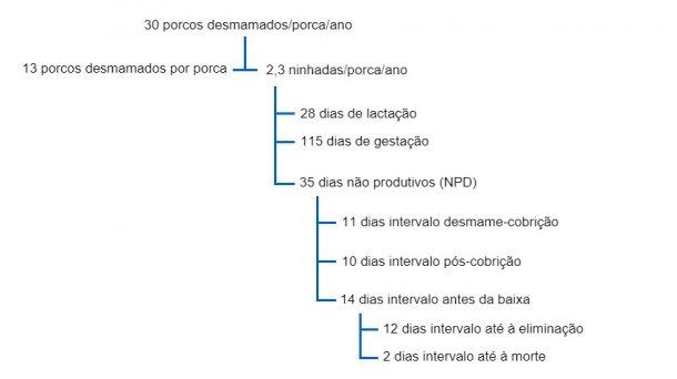 Fig. 1 Interrelação entre os DNP e outros factores de produtividade numa árvore produtiva para 30 porcos desmamados por porca e ano