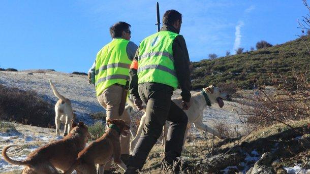 Foto 5: A caça é necessária mas os cães não devem aceder à exploração.