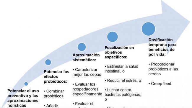 Figura 2. Estratégias para melhorar a utilização de probióticos em etapas precoces.
