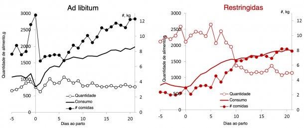Ilustração 3.Comparação do padrão de alimentação em quantidade e refeições por dia em porcas alimentadas ad libitum em comparação a porcas com alimentação restringida durante a lactação.(Nutreco R & D, 2015)