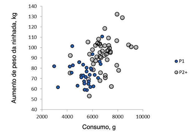 Ilustração2.Relação entre o consumo médio diário da porca durante a lactação e o ganho da ninhada emprimíparas emultíparas.(Nutreco R & D, 2015)