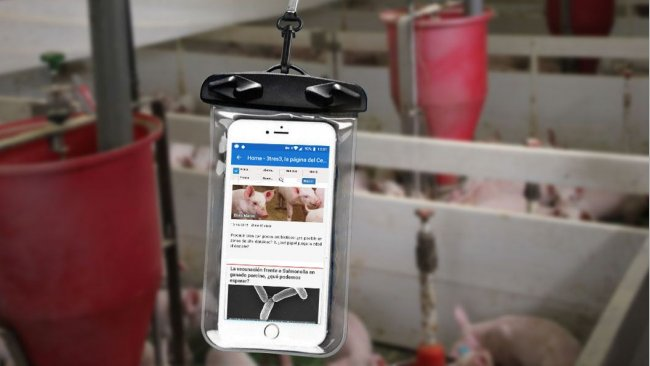 Un móvil dentro de una bolsa estanca.