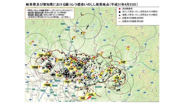 O mapa apresenta o total de javalis encontrados mortos ou capturados que são positivos à doença bem como as explorações de suínos afectadas (sublinhadas a amarelo), até ao dia 23 de Abril de 2019.