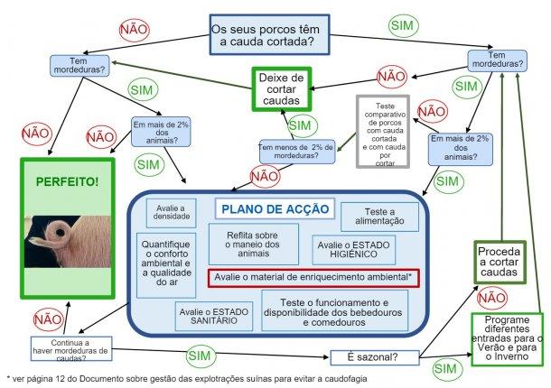 Árvore de tomada de decisão sobre o corte de caudas elaborado pela ANPROGAPOR