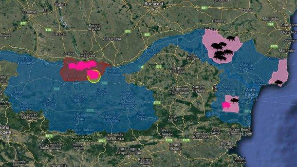Focos de PSA na Bulgária desde a primeira aparição da doença em Agosto de 2019. Em porcos domésticos (rosa) e javalis (negro).