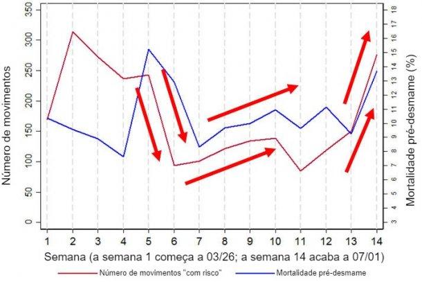 """Figura 2. Gráfico que mostra a relação entre a mortalidade pré-desmame e o número de movimentos """"com risco"""" (definidos como movimentos para/a partir dos cais de carga e/ou desmames). Estes dados são um sub-conjunto dos dados recolhidos durante 14 semanas em uma das explorações analisadas, a exploração 3."""