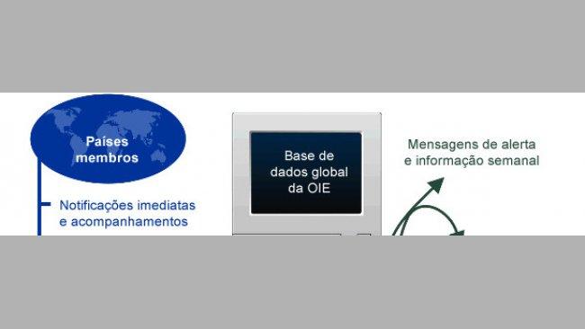 base de dados da OIE
