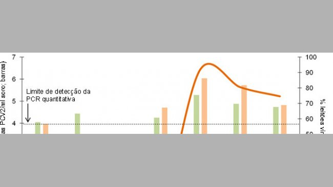 Comparativo da dinâmica da percentagem de leitões virémicos e carga vírica média nos leitões virémicos