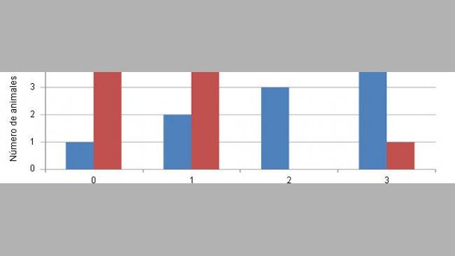 Distribuição da gravidade das lesões na cartilagem (escala de 0 a 3) de animais controlo ou com uma dieta com Cu/Mn ligados a aminoácidos.
