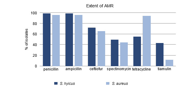 Percent of isolates resistant to antimicrobials