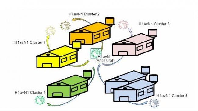 Heterogenicidad genética y antigénica relacionada con la granja