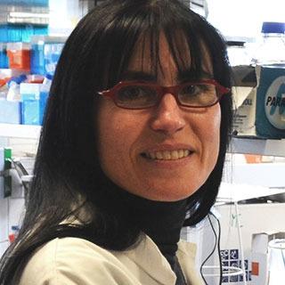 Virginia Aragón
