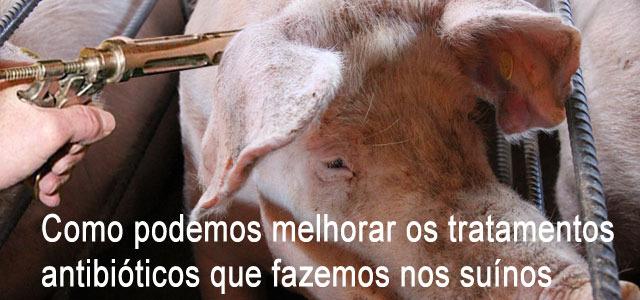 Como podemos melhorar os tratamentos antibióticos que fazemos nos suínos