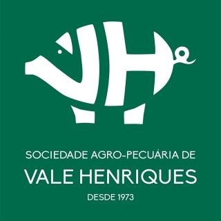 Vale Henriques