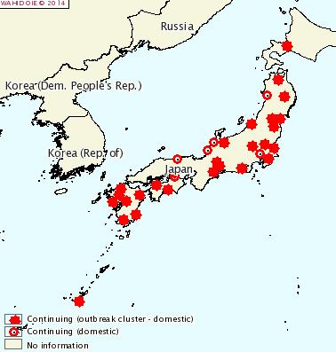 PED-Japan